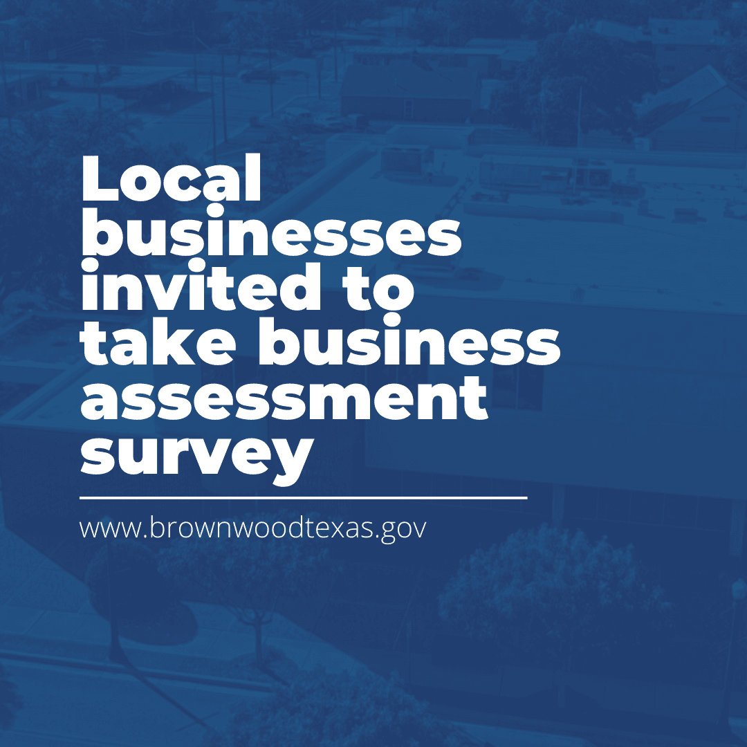 business survey