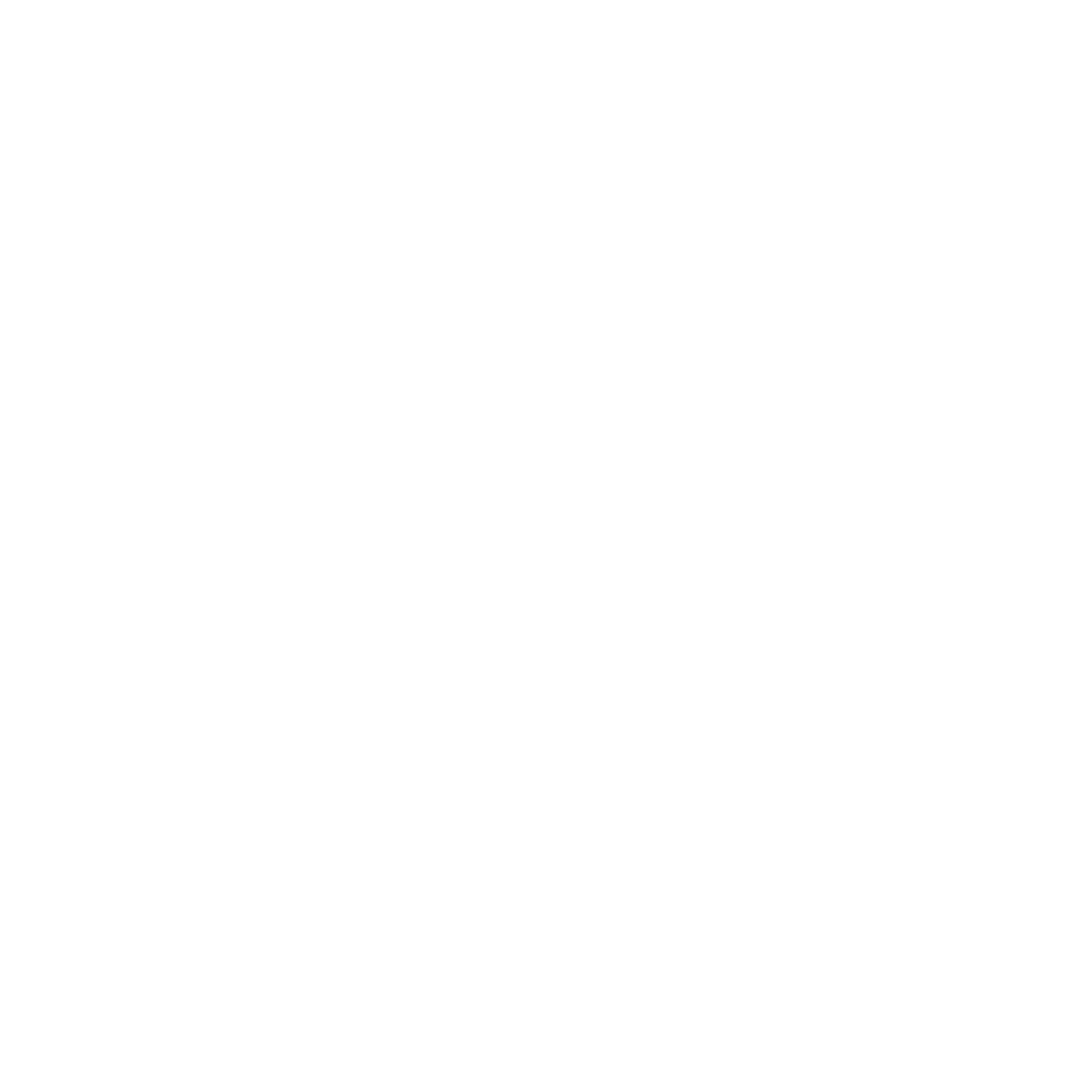 City of Brownwood - Logo White
