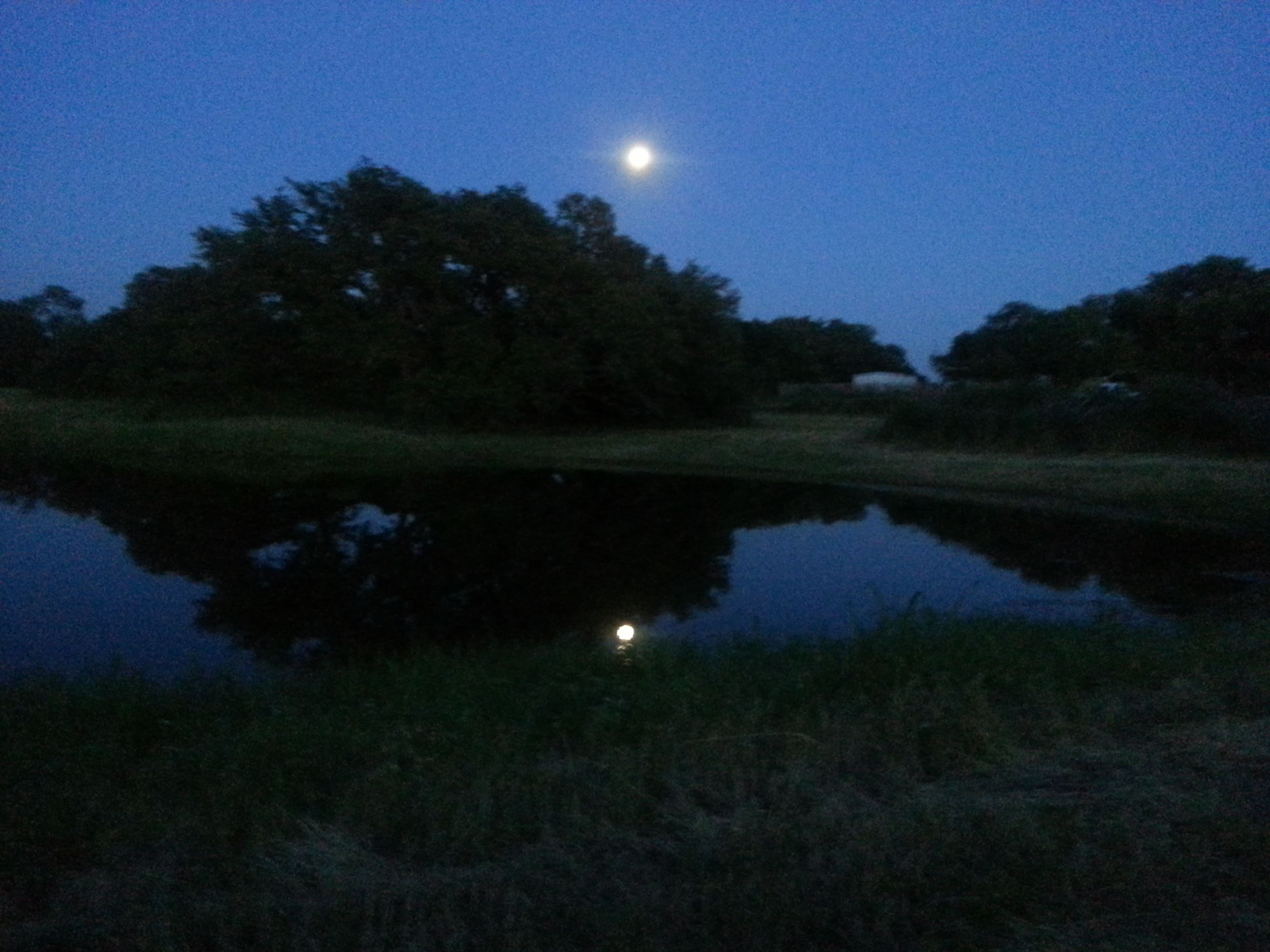 FULL MOON OVER BROWNWOOD Submitted by Gwen Stone